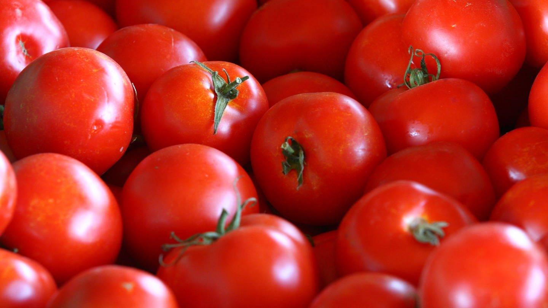 Tomaten: naturbelassen oder gentechnisch modifiziert? (Foto: picture-alliance / Reportdienste, Vincent Voegtlin / MAXPPP)