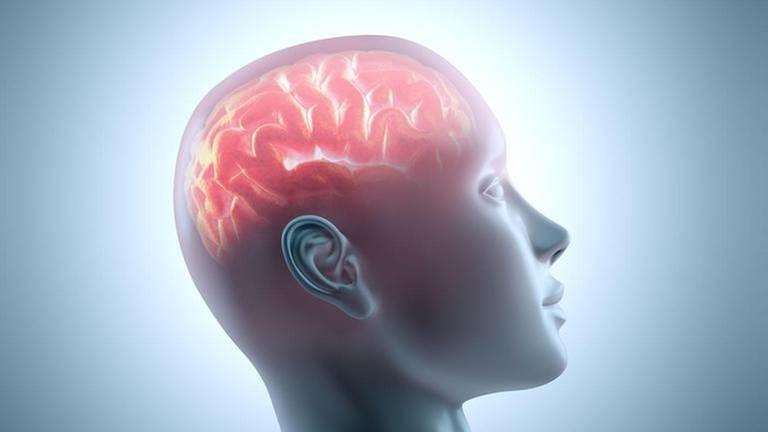 Lässt sich das Gedächtnis trainieren?
