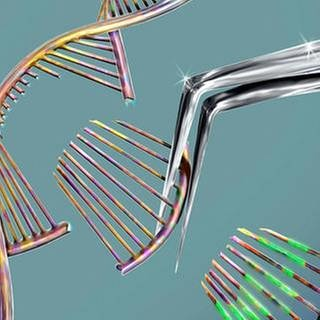 Crispr Gene Editing: Das CrisprCas9 Protein wird benutzt, um ein DNA-Molekül abzutrennen. Das DNA-Molekül kann dann verändert werden. (Foto: Imago, Imago/Science Photo Library -)
