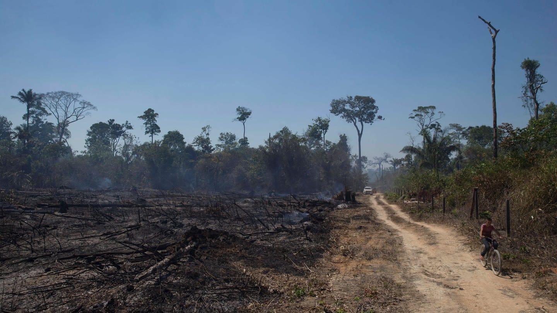 Ein von Bränden betroffenes Gebiet im Amazonas-Dschungel in der Gemeinde Novo Progresso im Bundesstaat Paro in Brasilien im August 2020 (Foto: Imago, imago images / ZUMA Wire)