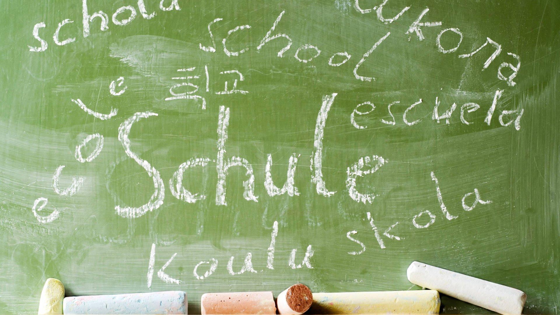 Deutschdefizite an Schulen – Ist Mehrsprachigkeit die Lösung   SWR20