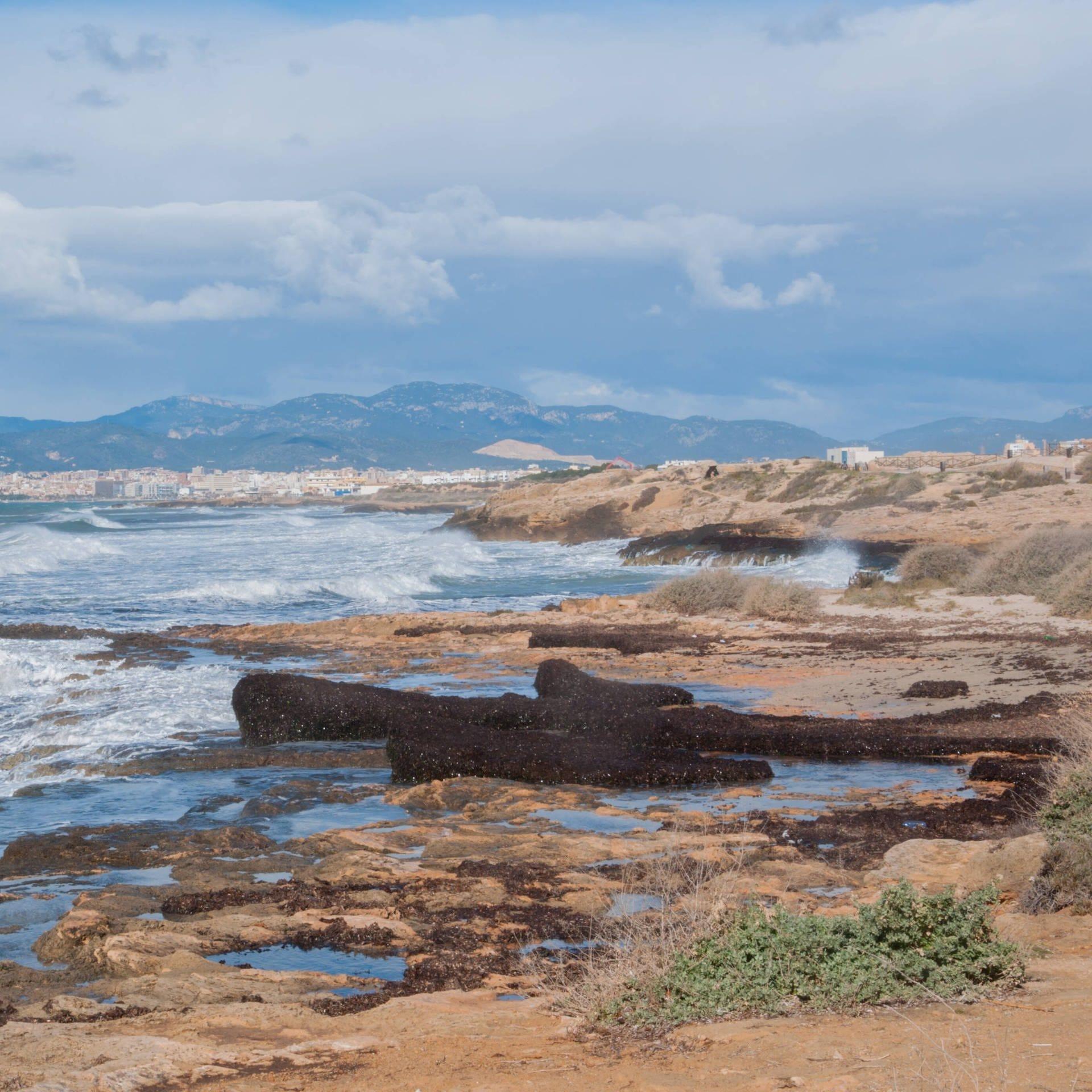 Mallorcas Zukunft – Weniger Tourismus, mehr Nachhaltigkeit?