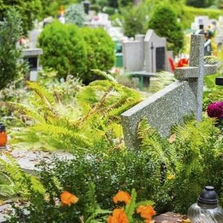 Grabsteine auf einem Friedhof. (Foto: Getty Images, Thinkstock -)