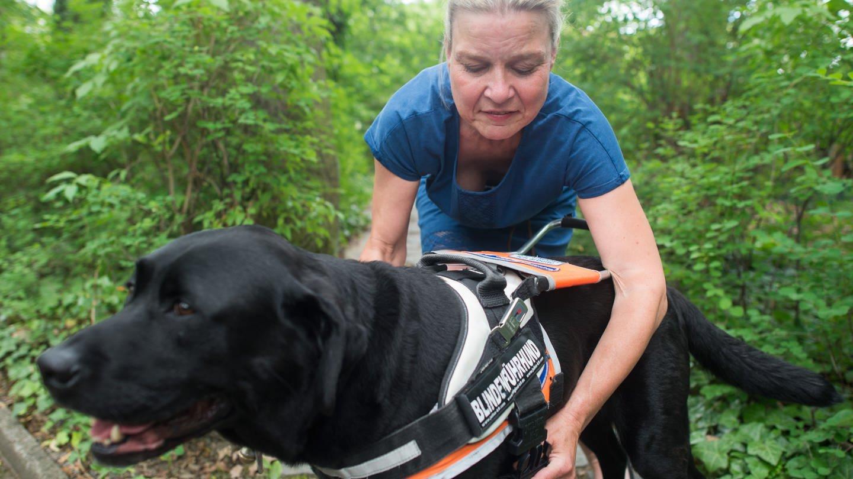 Die erblindete Silke Rauterberg nimmt ihrem Blindenhund, einem Labrador, das Geschirr hab (Foto: picture-alliance / Reportdienste, picture alliance / dpa | Klaus-Dietmar Gabbert)