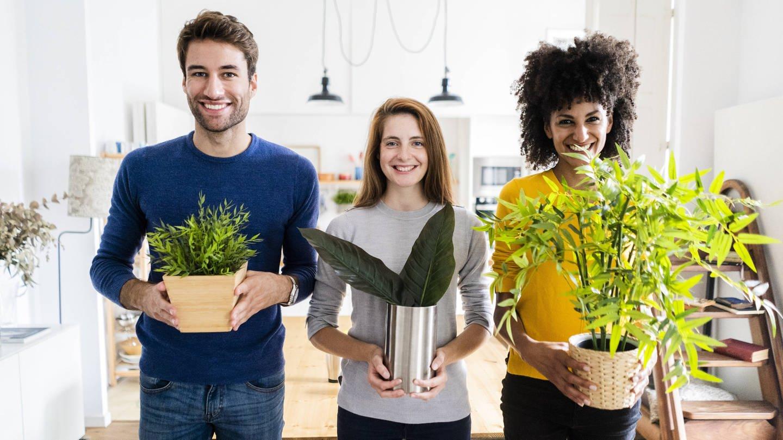 3 Freunde bringen Pflanzen mit: Die Zahl enger Freunde bestimmt die Chance, ein Jahr nach einem Herzinfarkt noch am Leben zu sein, doppelt so stark wie medizinische Risikofaktoren
