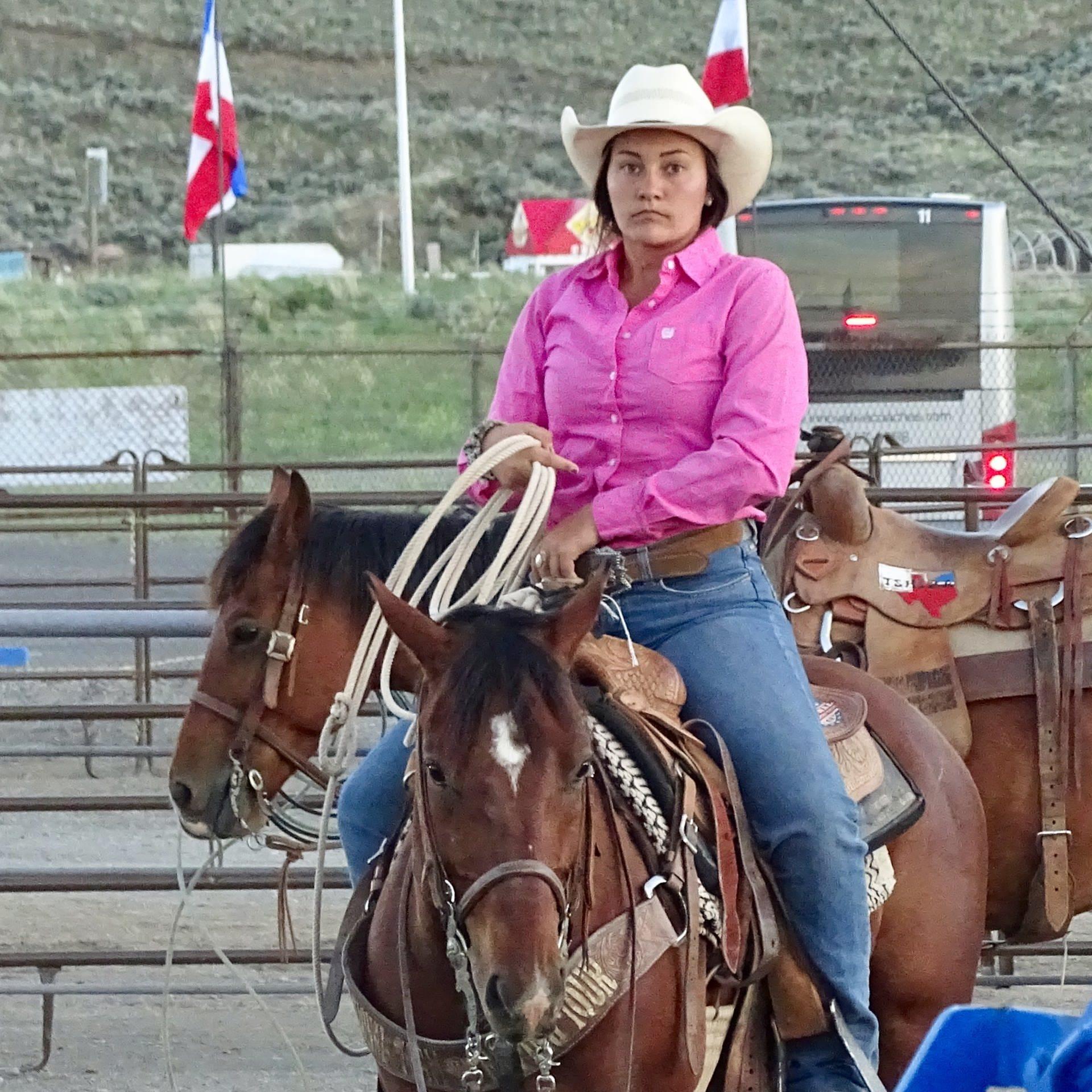 Das Rodeo und der Mythos Cowboy