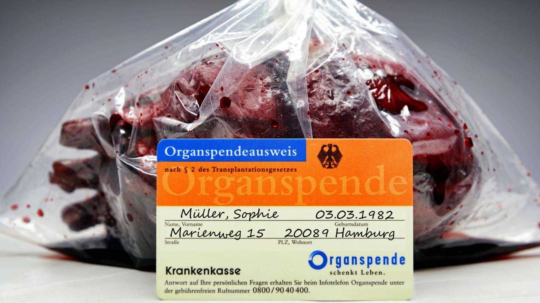 Herz in einer Plastktüte mit Organspenderausweis (Foto: Imago, imago images / blickwinkel)