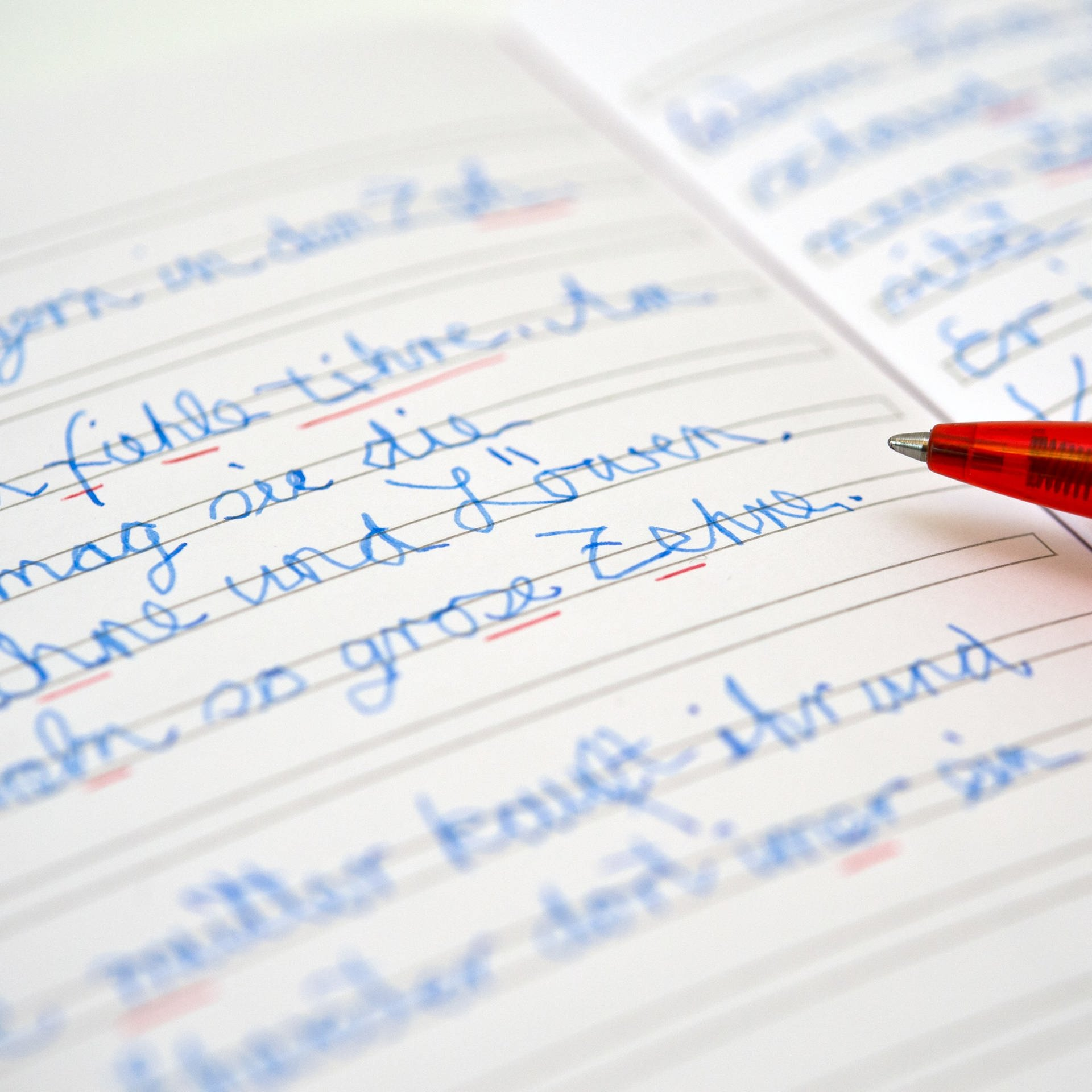 Schlecht- oder Rechtschreiben - Provokante Thesen zur Orthografie