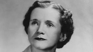Rachel Carson, Biologin (1907 - 1964) (Foto: picture-alliance / Reportdienste, picture-alliance / Reportdienste - Everett Colle / Everett Collection)