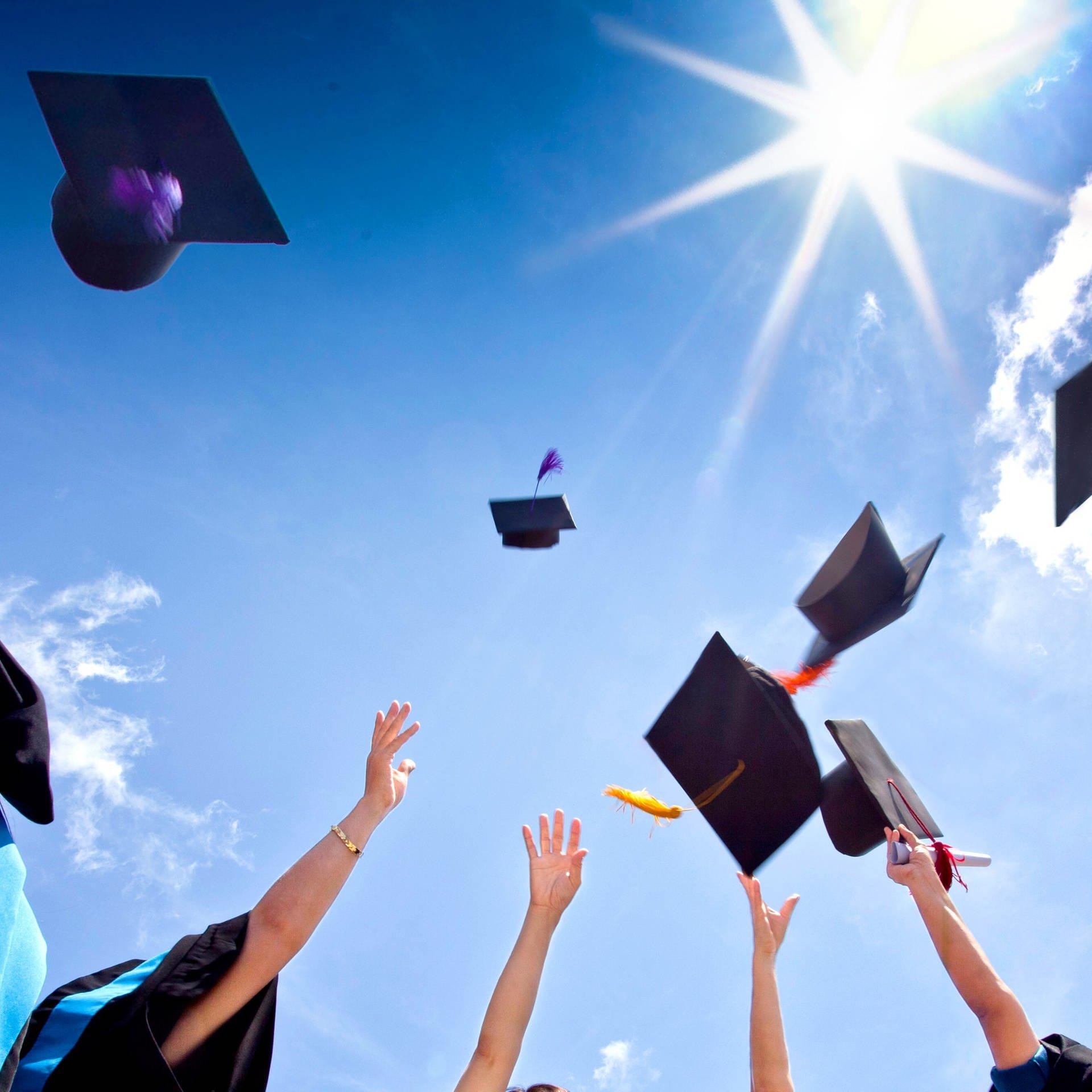 Musterschüler - Was Schulen und Hochschulen heute leisten müssen