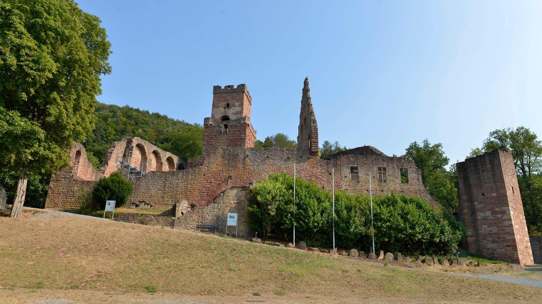 Die Burgruine Freudenberg thront über dem Main.