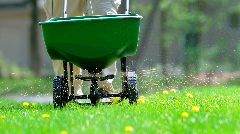 Gartenarbeit im Frühling (Foto: Getty Images, Foto: groveb)