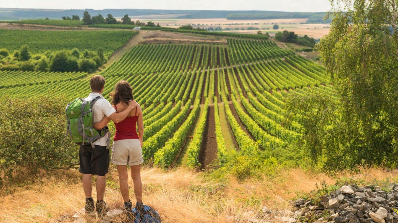 Wandern in Rheinhessen: Ein junges Paar blickt auf der Hiwweltour Heideblick über die Weinberge (Foto: Pressestelle, Rheinland-Pfalz Tourismus GmbH/Dominik Ketz)