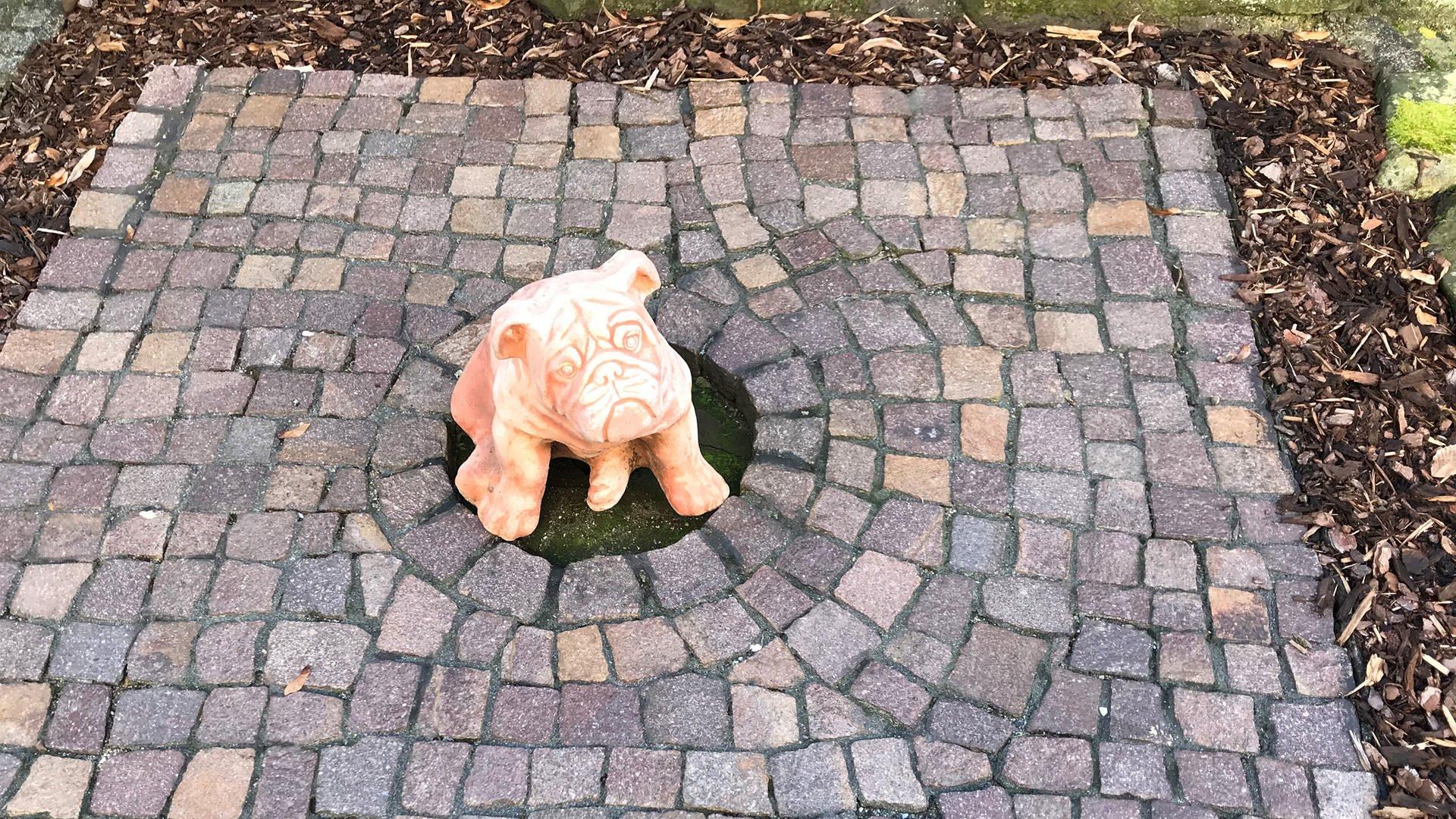 Eine kleine helle Skulptur als Hund auf Kopfsteinpflaster Hingucker gesehen in Michelfeld-Gnadental