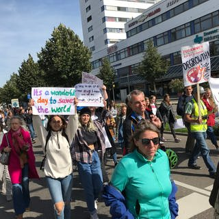 Proteste gegen den Klimawandel - Fridays for Future in Heilbronn (Foto: SWR)