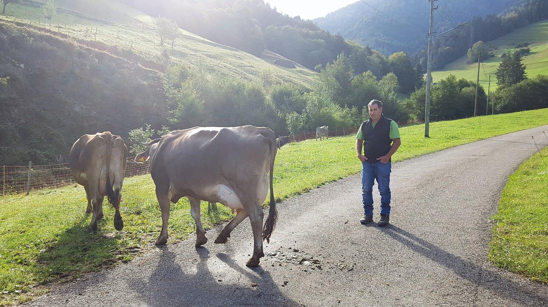 Landwirt Markus Glockner mit zwei Kühen (Foto: SWR, Nadine Zeller)