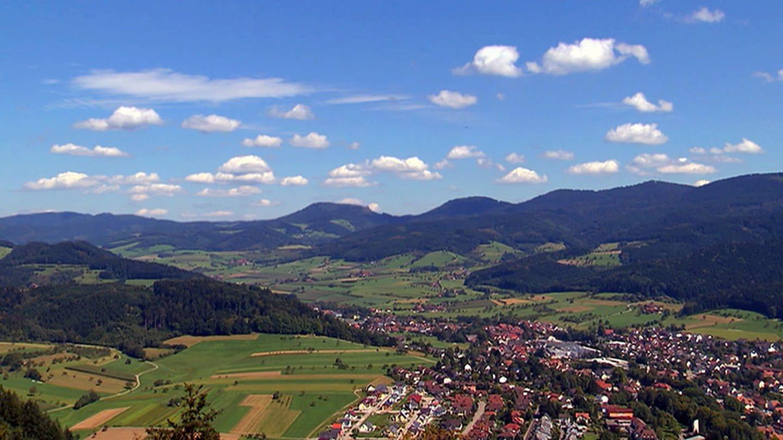 Harmerbachtal (Foto: SWR)