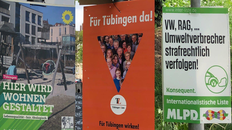 Collage Wahlplakate in Tübingen (Foto: SWR)