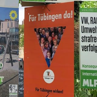 Collage Wahlplakate in Tübingen (Foto: SWR)