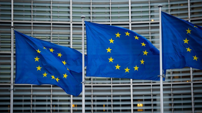 """Brexit, Polen, Ungarn, Grenz-Patrouillen - """"Der EU geht es insgesamt nicht gut"""""""