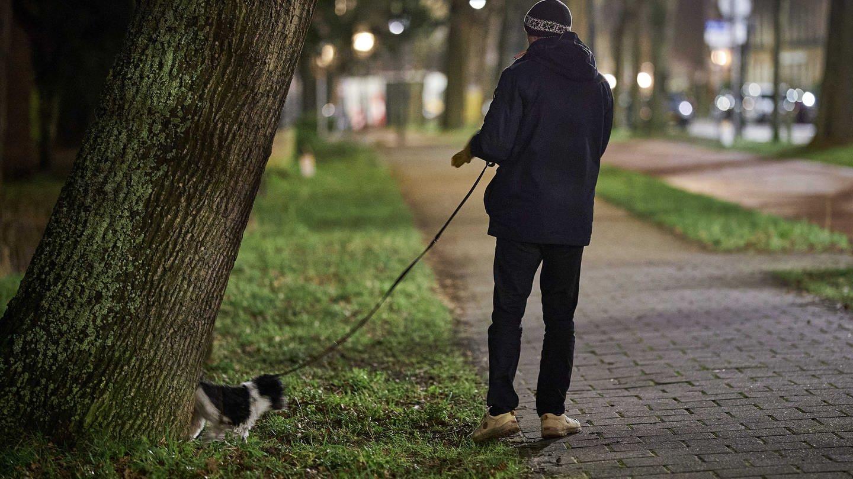 Mann führt nachts seinen Hund spazieren (Foto: picture-alliance / Reportdienste, Picture Alliance)