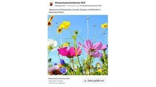 Die von Böhmermann kritisierte Anzeige des rheinland-pfälzischen Umwelt- und Klimaschutzminsteriums Rheinland-Pfalz (Foto: Screenshot Facebook Werbebibliothek)