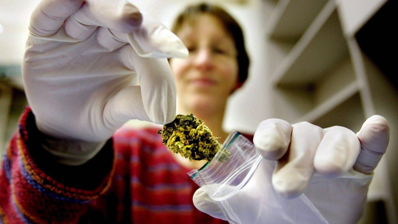 Suchthilfe RLP für liberalere Cannabis-Politik
