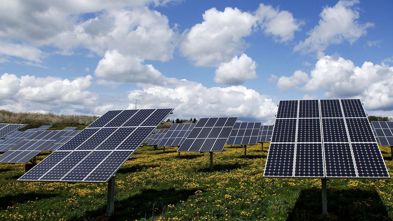 Photovoltaik-Anlage auf Wiese (Foto: SWR)