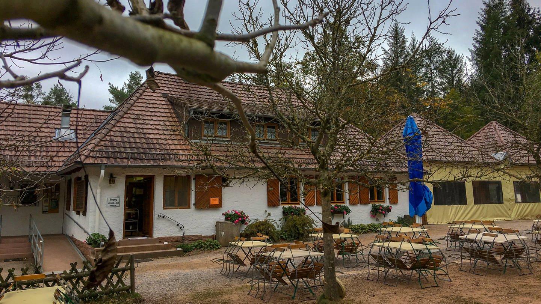 Pfälzerwaldhütte Drei Buchen in Dahn (Foto: SWR)