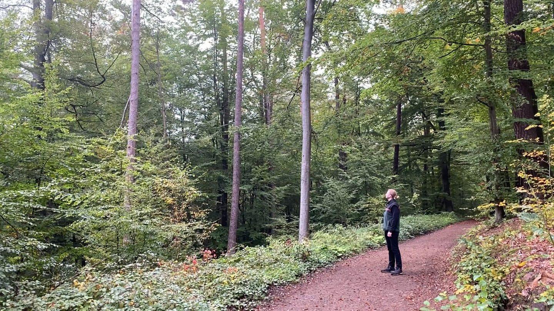 Darum ist das Wandern im Pfälzerwald gerade gefährlich