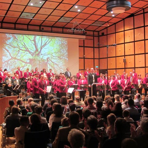 Kolping-Orchester (Foto: SWR)