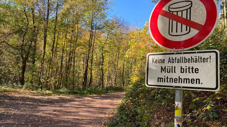 Müll im Pfälzer Wald bei Neustadt (Foto: SWR)
