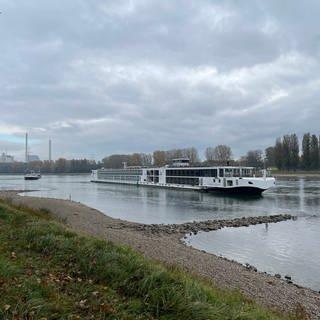 Festgefahrene Schiffe auf dem Rhein zwischen Hagenbach und Karlsruhe. (Foto: SWR)
