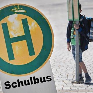 Bildmontage: Schild Schulbushaltestelle und Junge der an einer Haltestelle wartet (Foto: dpa Bildfunk, Bildmontage: SWR)
