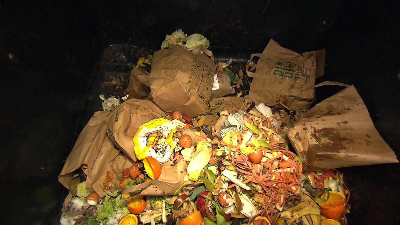 Biotüten liegen auf Biomüll (Foto: SWR)