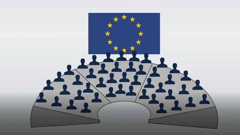 Was macht das EU-Parlament? (Foto: SWR)