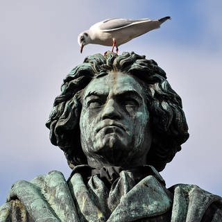 Beethoven-Statue (Foto: picture-alliance / Reportdienste, Martin Meissner)
