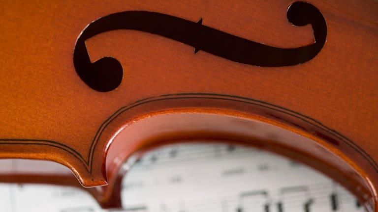 Kammerkonzert (Foto: SWR, SWR)