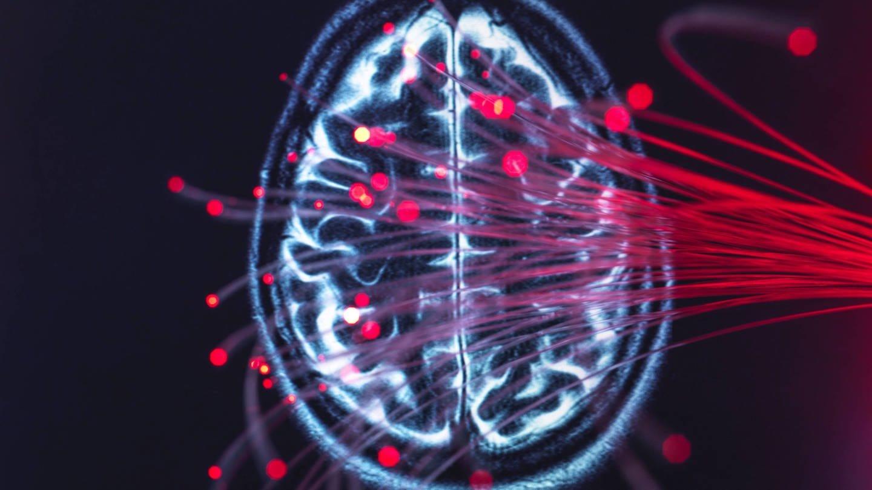 Wie verändert sich das Gehirn? (Foto: Imago, imago images / Westend61)