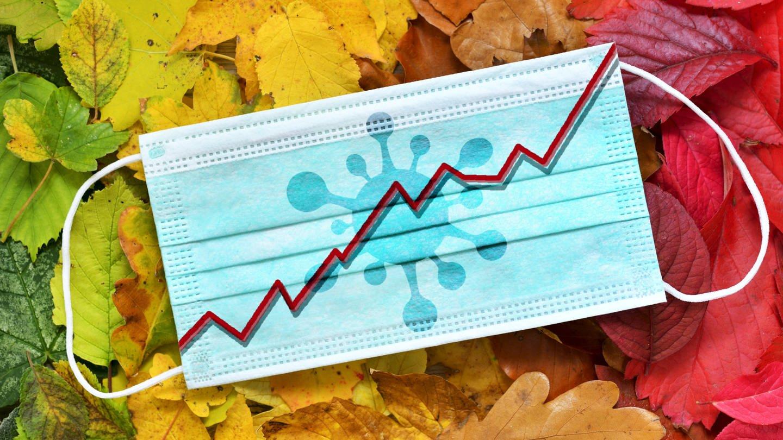 Mundschutz mit Kurven-Grafik auf Herbstlaub (Foto: Imago, imago images / Christian Ohde)