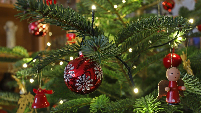 Weihnachtsbaum (Foto: Imago, imago images / Rene Traut)
