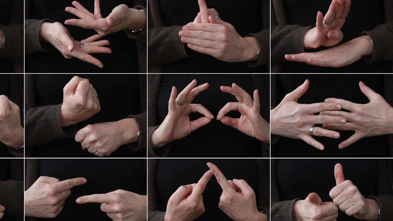 Die Bildkombo zeigt die Hände einer Gebärdendolmetscherin (Foto: dpa Bildfunk, picture alliance / Arne Dedert/dpa | Arne Dedert)
