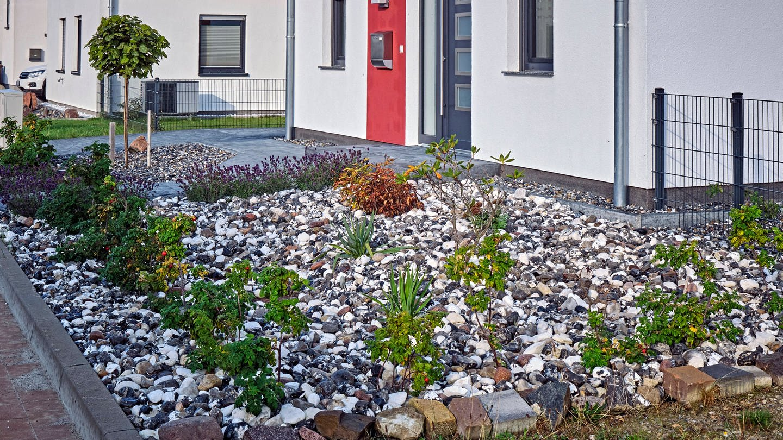 Schottergarten in einer Neubausiedlung (Foto: Imago, IMAGO / STAR-MEDIA)