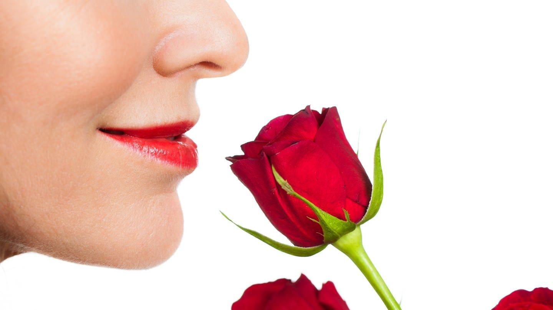 Eine Frau riecht an einer roten Rose. Düfte lassen sich unendlich kombinieren