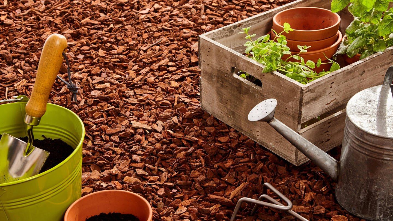 Mulch schützt den Boden in heißen Sommern vor dem Austrocknen