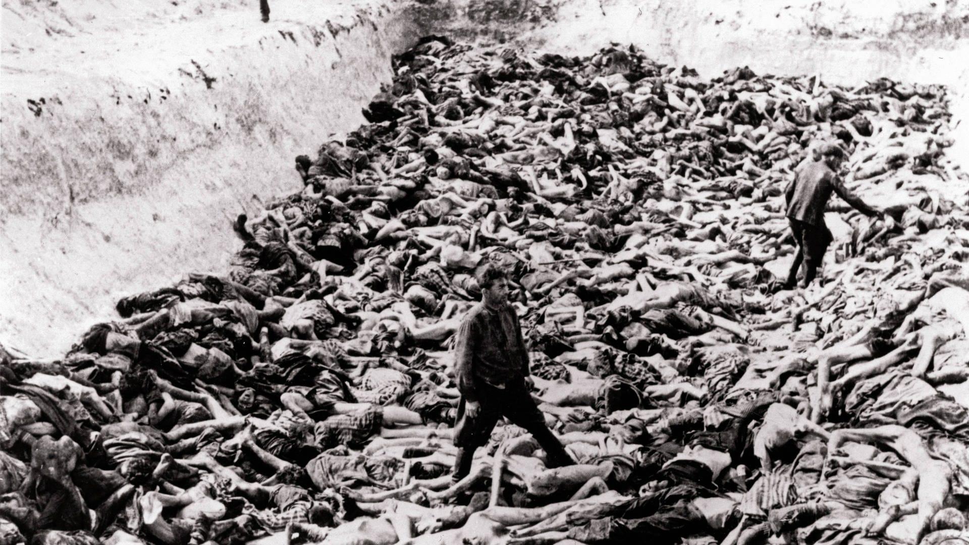 6 Millionen Holocaust-Opfer – Woher stammt diese Zahl?