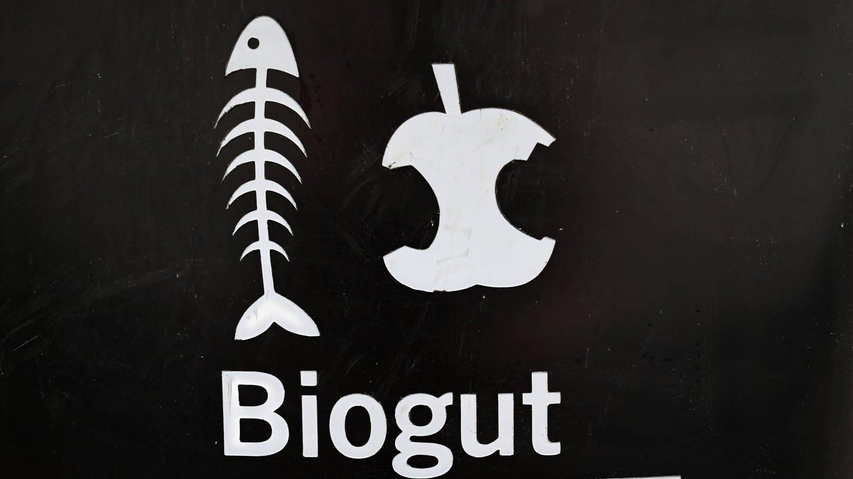 Biogut-Tonne der BSR Berliner Stadtreinigung (Foto: Imago, Petra Schneider-Schmelzer via www.imago-images.de)