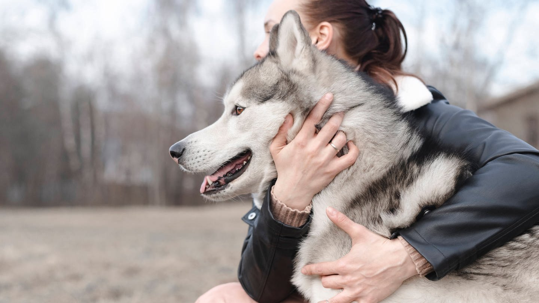 Frau umarmt Hund (Foto: Imago, Ekaterina Yakunina via www.imago-images.de)