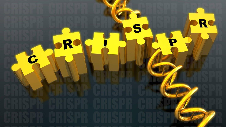Nobelpreis 2020 für Entwicklung einer Methode zur Genom-Editierung. (Foto: Imago, imagoimago/Science Photo Library)