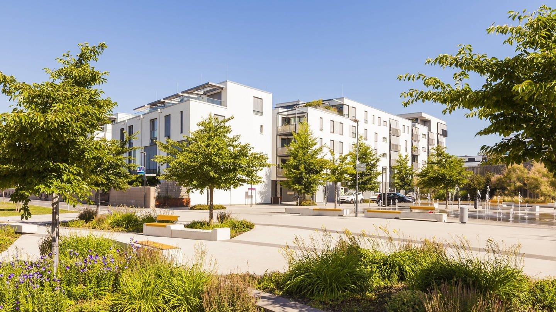 Neue Wohnsiedlung im Heidelberger Stadtteil Bahnstadt. Bäume sind für Stadtplaner ein einfaches und kostengünstiges Mittel, die Gesundheit der Anwohner positiv zu beeinflussen.